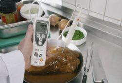 Testo 112 labai tikslus temperatūros matavimo prietaisas
